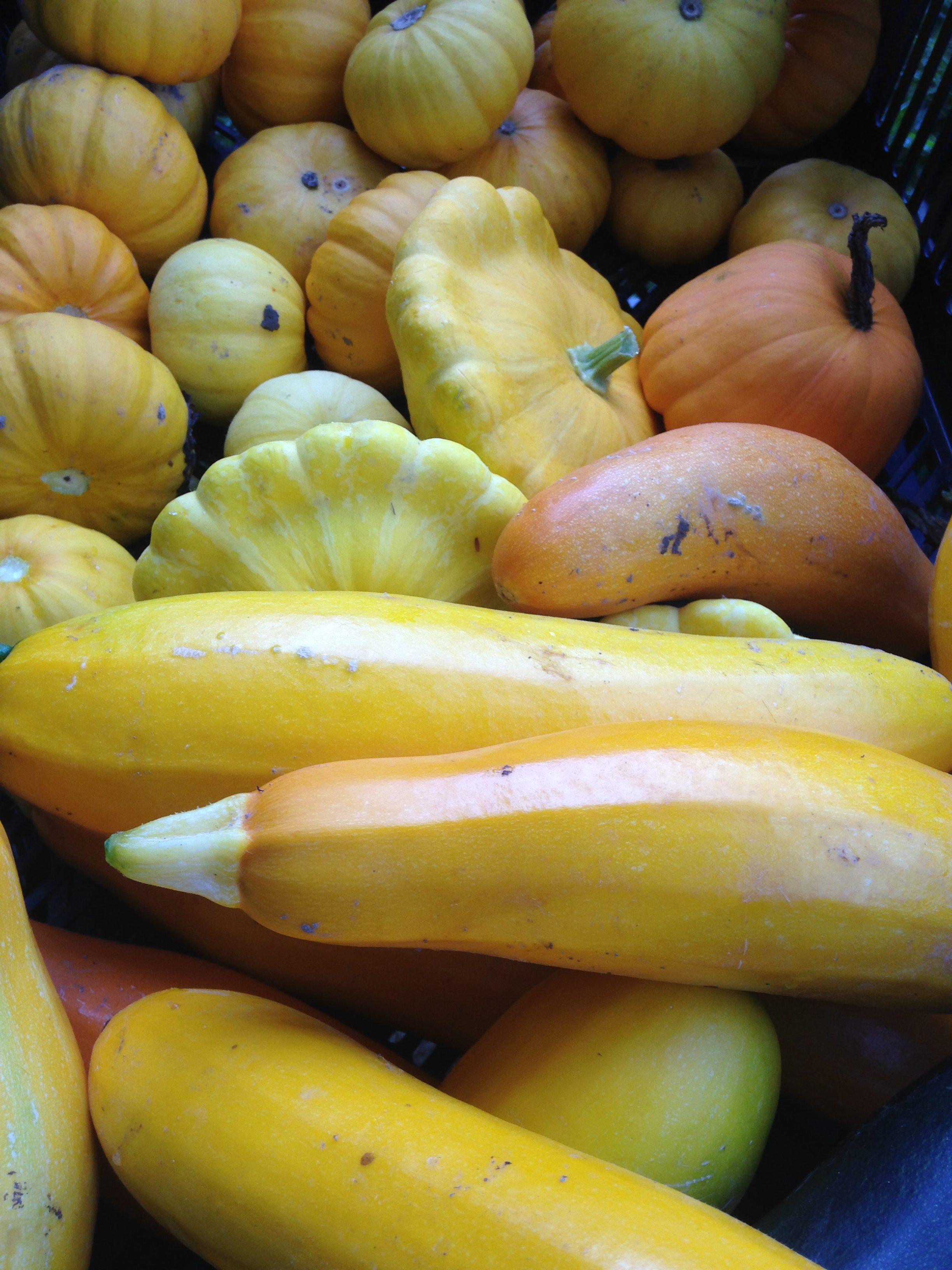 Courgettes-jaunes