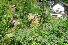 jardin des aromatiques