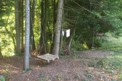 le coin forêt