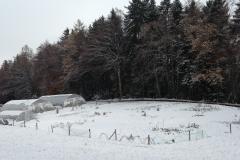 culture en hiver
